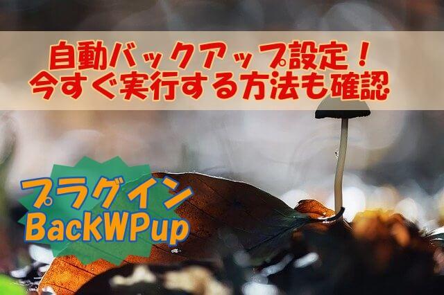 BackWPup自動バックアップ設定