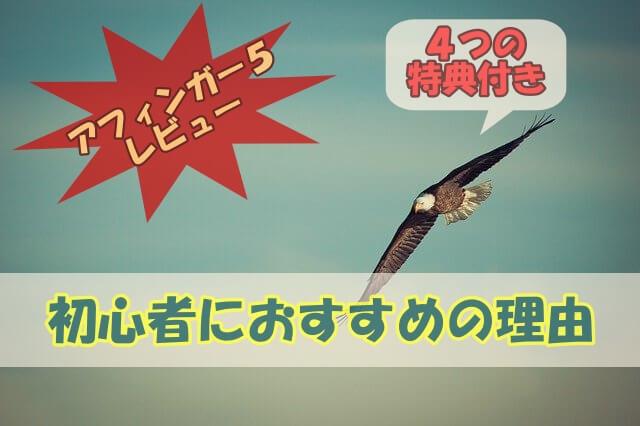 アフィンガー5レビュー