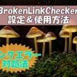 プラグインBrokenLinkChecker初心者におすすめの設定方法!リンクエラー発生時の対処法も説明