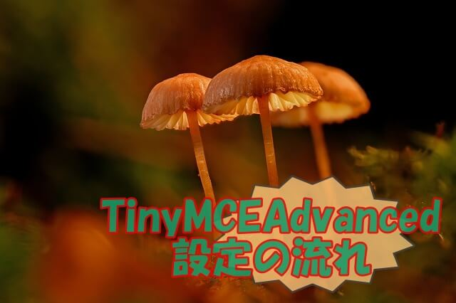 TinyMCEAdvanced 設定の流れ