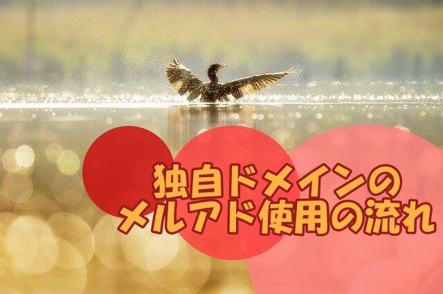 水面からはばたく鳥
