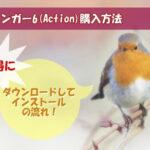アフィンガー6(Action)の購入方法!お得にダウンロードしてインストールするやり方