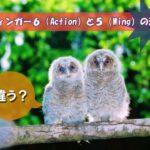 アフィンガー6(Action)違い