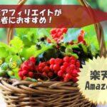 【楽天アマゾン】物販アフィリエイトが初心者におすすめ!ブログ収益を簡単にアップ!
