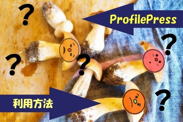 profilepress利用方法